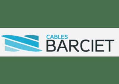 BARCIET : Acteur reconnu dans le cable en acier