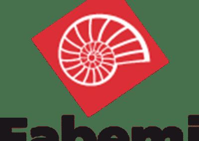 Le groupe FABEMI est leader sur le marché des produits en béton. Il propose une offre de produits répondant aussi bien aux besoins horizontaux (planchers béton, poutrelles et entrevous) qu'aux besoins verticaux (gammes de blocs courants et isolants).